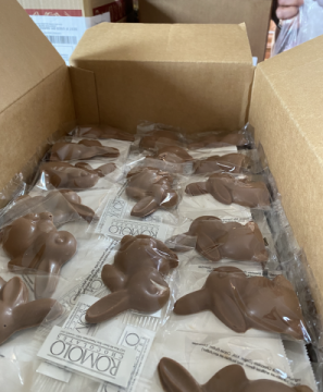 Chocolate bunnies donated by Romolo's