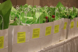 Gift bags for all golfers